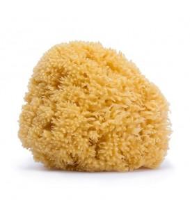esponja-suavinex-natural